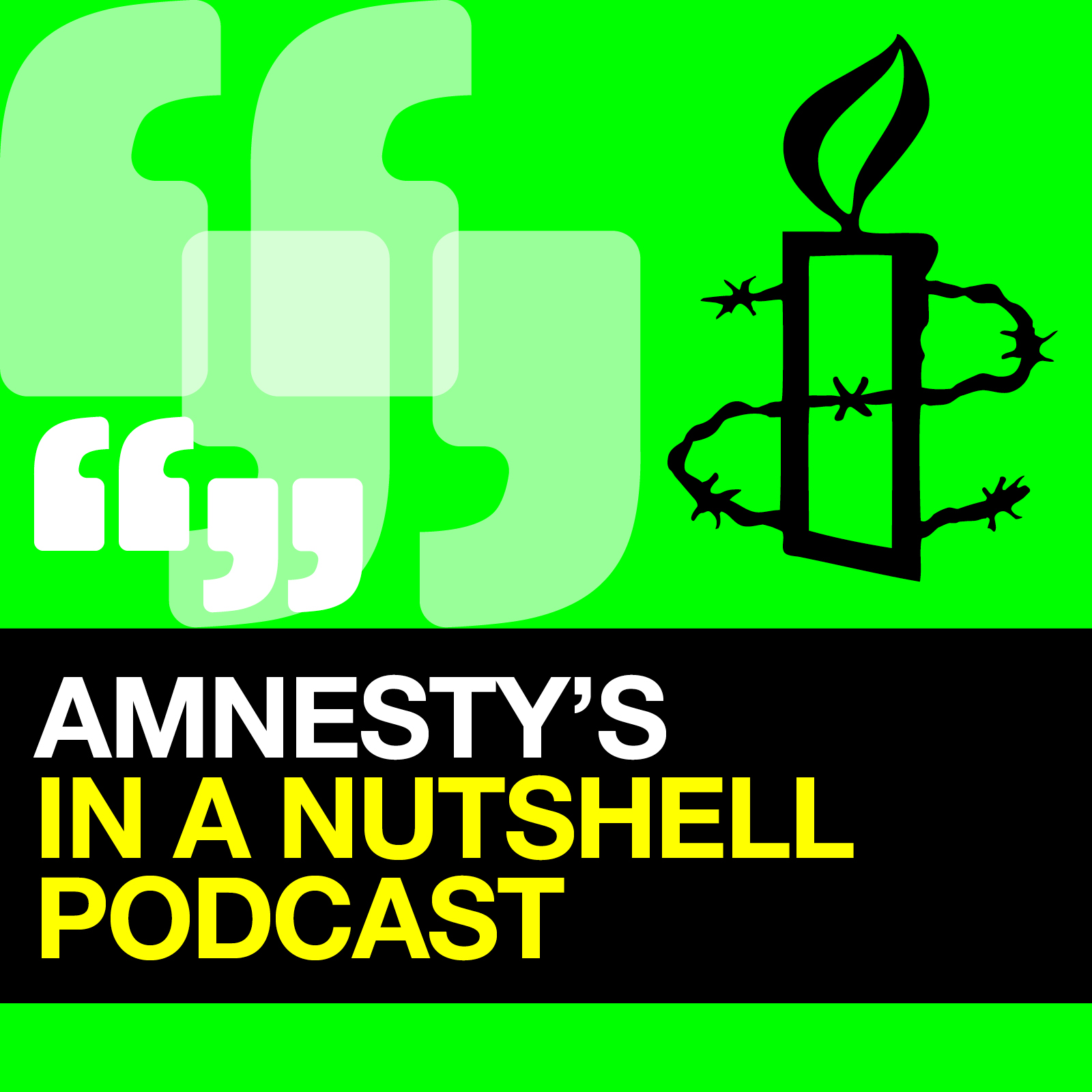 Amnesty's In a Nutshell Podcast