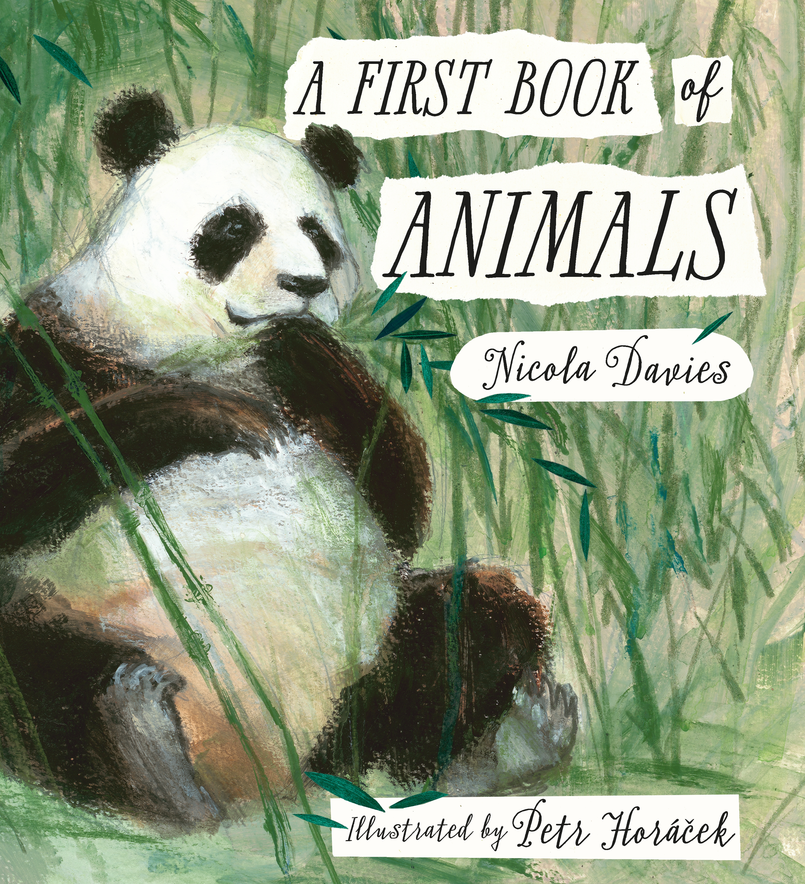 A First Book of Animals cover.jpg