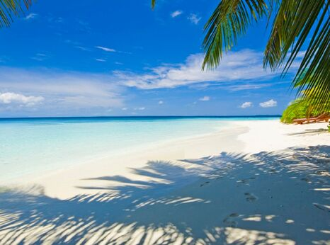 Maldives beach - ©iStockphoto.com/Martin Strmko