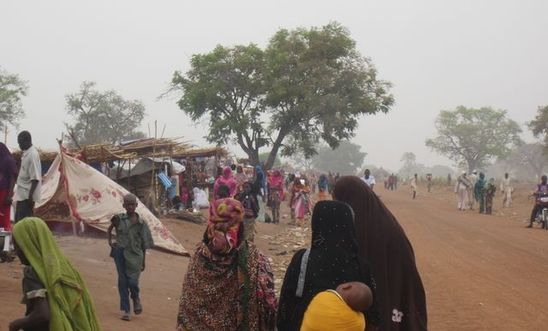 Fleeing the Central African Republic to Chad