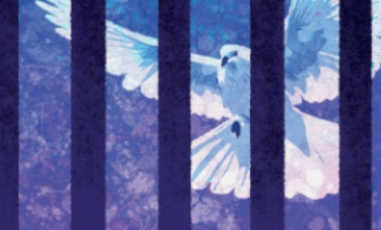A dove behind bars