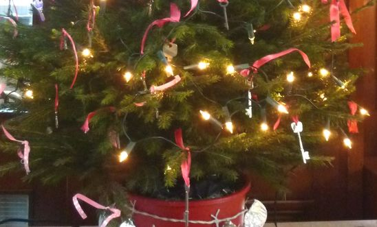 Chipping Norton Amnesty Group's decorated Christmas tree