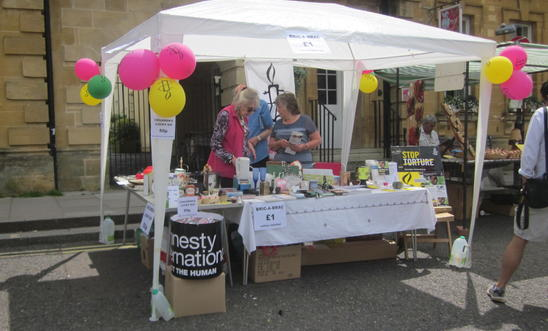 Chipping Norton Amnesty International Group stall at the Chipping Norton Festiva