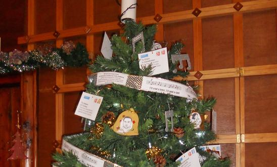 Amnesty decorated Christmas Tree