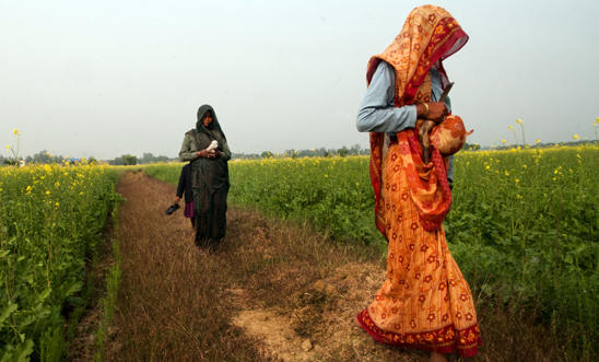 Dalit women walk through mustard fields in Uttar Pradesh