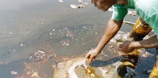 Oil spill in Bodo, Nigeria